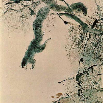 Flying Squirrel by Chen Wen Hsi