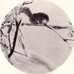 Squirrels in Snow by Chen Wen Hsi