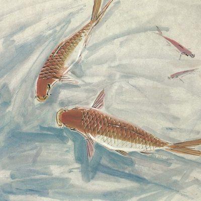 Koi Fish Chen Wen Hsi