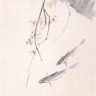 Chen Wen Hsi Carps