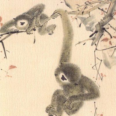 Chen Wen Hsi Swinging Gibbons