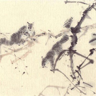 Chen Wen Hsi Squirrels
